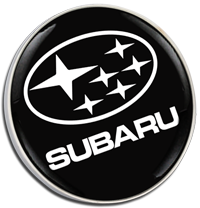SUBARU STARS Pin Badge